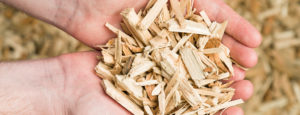 Holzschnitzel für eine Schnitzelheizung